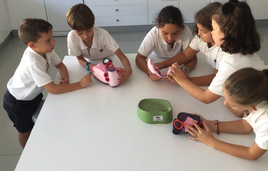 Yago School in the Natural Science Lab
