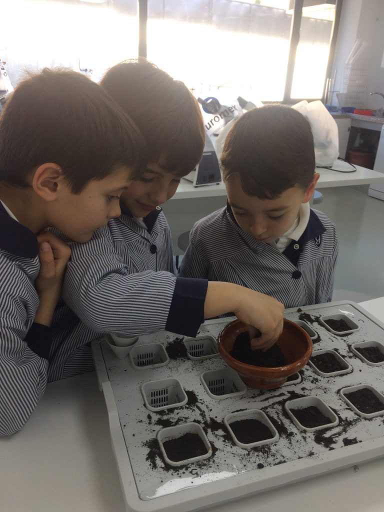 Learning Natural Science in the Lab