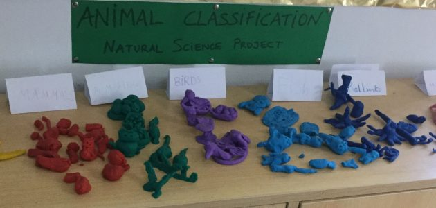 ANIMAL CLASSIFICATION ART AND NATURAL SCIENCE 3