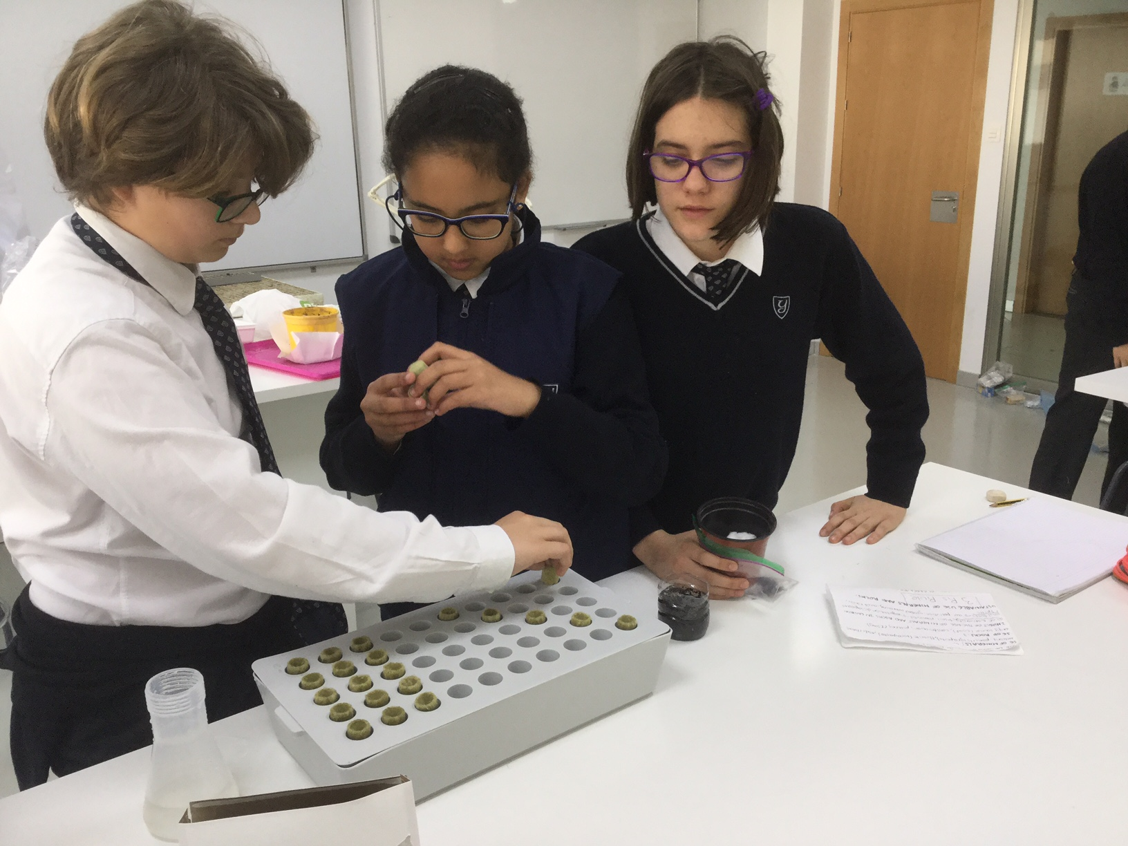 The seeds project in biology at yago School 1