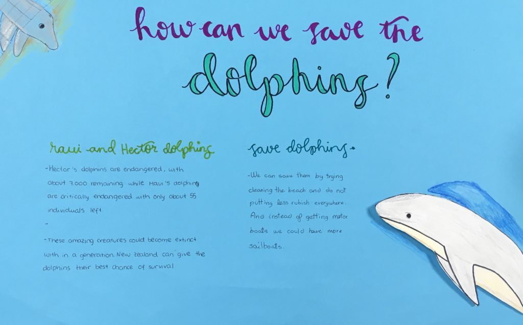 Debate in English: How to save dolphins