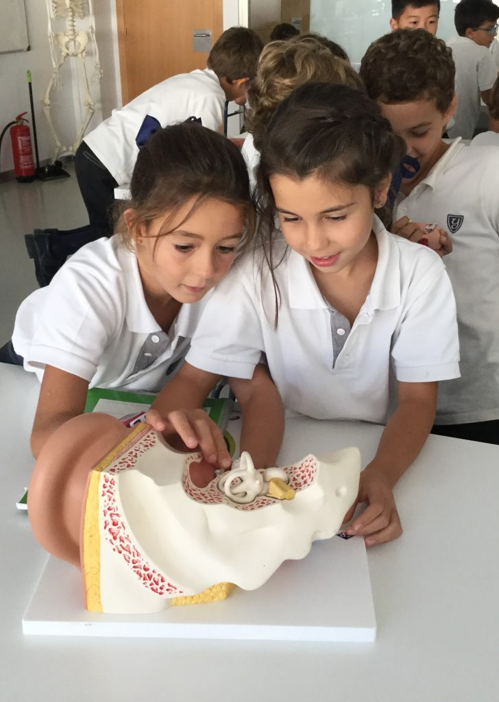 Natural Science: Reviewing the parts of the body