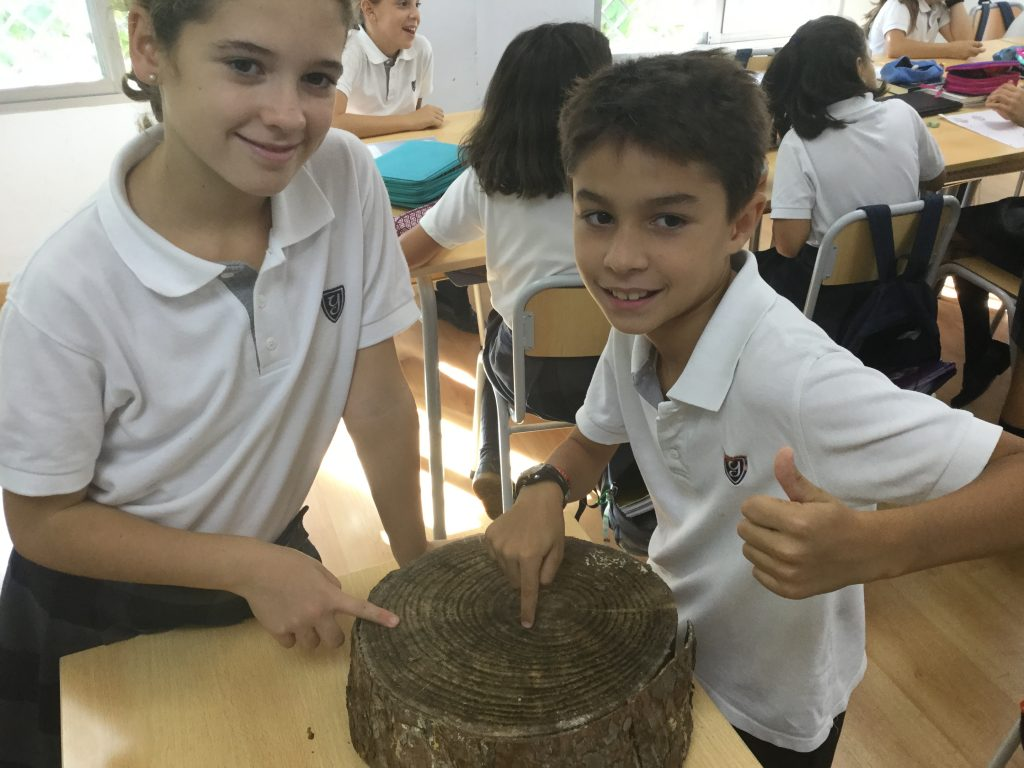 Living Things, Plants and Ecosystems in Natural Science.