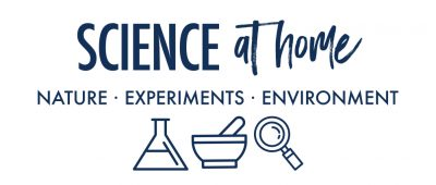 things to do on Easter: science at home