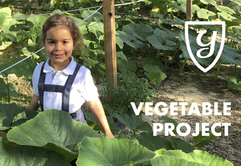 An example of Outdoor Learning in the Yago School garden